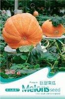 Mix min order $5 Pumpkin Seed 5 Giant Pumpkin Vegetable Heirloom Organic Green Nutritious Food hot selling  free shipping