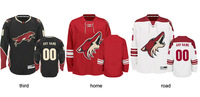 men/kids/women Custom jersey Phoenix Arizona Coyotes jersey nhl cheap Home/Away/Alternate Embroidery Logo Sew on Any Name & NO.