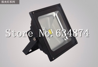 Wholesale  LED floodlight IP65  10W Waterproof 110V/220V/240V floodlighting light color  warm white cool white