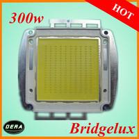 free shiping integrate  High Power 300W Light emitting diode Bridgelux  led cob chip 300W 30000-33000lm  heat sink light