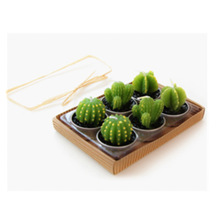 Rare New Mini Cactus Candles Plant Decor Home Table Garden 6pcs/lot kawaii home Decoration free shipping(China (Mainland))
