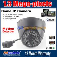 720P Megapixel(1280x720) Network IP Camera onvif motion detection 48pcs IR LEDS IR-Cut Night vision free shipping