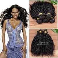 3 Bundles Malaysian Virgin Hair kinky curly virgin hair, grade 6A malaysian curly hair free shipping human hair extension