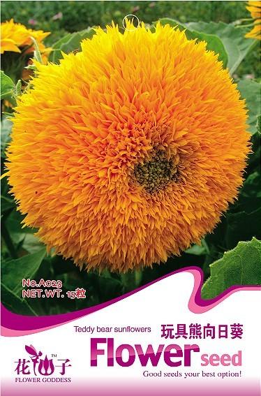 girassol anao de jardim:Sunflower Flower Seeds
