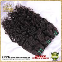 Brazilian Virgin Hair Water Wave Cheap Human Hair Weaves 100g Bundles Brazilian Virgin Natural Wave Wavy Hair 4pcs/Lot Free Ship