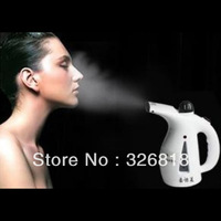 200 ml Multifunction mini hand  electric face  Sauna steamer, garment steam iron
