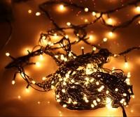 Lin Jie LED lights Christmas decoration lights 10 meters 200 head of glaucoma, Christmas lamp festival lamp plug