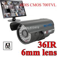 SNO Korea technolgoy 36 LED Color Night Vision Indoor/Outdoor security Hdis CMOS IR surveillance CCTV Camera +Free Shipping
