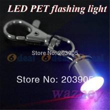 popular led dog tag