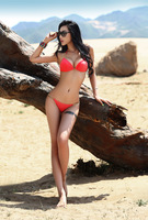 On sale, fashion swimwear with lining,sexy bikini with cup, size S/M/L, LX8800