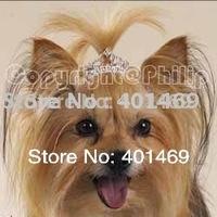 New 6Pcs lot free shipping 57mm Clear AB rhinestone tiara crown charm pet hair ornament barrette accessories