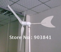 100w hyacinth windmill,wind generator,wind turbine,high-quality,CE,ROHS,ISO9001,low price,free shipping,12VDC,12VAC,24VDC,24VAC