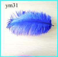 "Free Shipping 50Pcs/lot Blue Ostrich Feather 8-10"" 20-25cm DIY Craft Supply Dress Mask Hat Jewelry Christmas Decorative Feather"