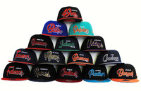 Wholesale  New Arrive !!Snapback , Snake skin Snapback  Sports Hats Snapback Caps,Basketball Hat / Cap 24 pce Per lot