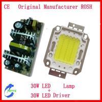 30W LED Module lamp+30W LED Driver