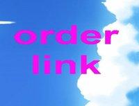 dropshipping order link/mix order link/special order link