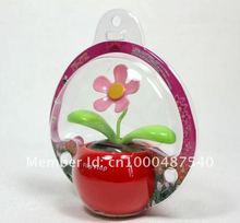 popular solar apple flower