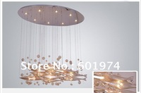 Free shipping selling modern glass bubble chandeliers, glass fish chandeliers,  living room chandelier, chandelier restaurant