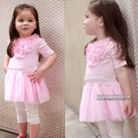 2013 NEW ARRIVAL 5pcs/lot,Baby girl dress, baby dress , girls pink princess dress+ frees shipping