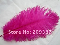 free shipping ostrich feather ,12-14inch (30-35cm) 100piece/lot ( Fushia)