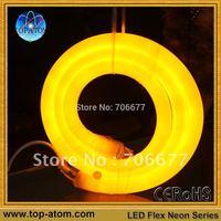 LED Neon Flex Rope Light/360 degree shine/100 leds per meter/all color option/round shape dia 25mm/24VDC input--free shipping