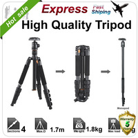 Coman Camera professional Tripod Ball Head high quality for DSLR Express Ship