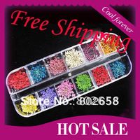 Free Shipping (60pcs Flowers/Lot)Nail Art DRIED FLOWER Nail Art Decoration/12 Colors Real Dry Dried Flowers DIY Tips