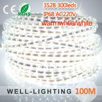 100M 3528 led strip light 300leds/Mwhite or warmwhite,led strip light 220V IP68+3pcs European Plug+100pcs clips+20pcs end caps
