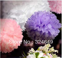 "New 10Pcs 4"" Tissue Paper Pom Pom Mix Color Flower Balls Party Wedding Deco"