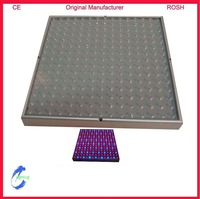 Free Shipping 15W LED Plant Grow Light RED+BLUE  Two Quality Warranty