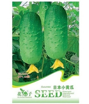 original package Hot selling 20pcs fruit cucumber seeds,Cuke Seeds, Green vegetable Seeds