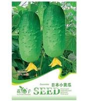 original package Hot selling 20pcs fruit cucumber seeds,Cuke Seeds, Green vegetable Seeds