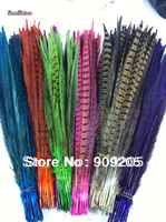 Free Shipping 100pcs/lot ringneck pheasant Feather tail natural pheasant tail feather 12-14 inches 30-35cm