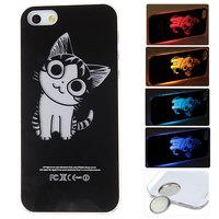 Free shipping Cat Pattern Fashion Sense LED Flash Light Hard Back Case Cover for iPhone 5 5S