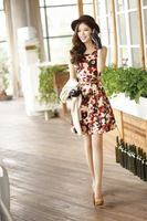 Cute  Skirt Twin Set  Women Work Wear Spring And Autumn Cotton Dress Long-Sleeve Dress  2013 Fashon Topshop