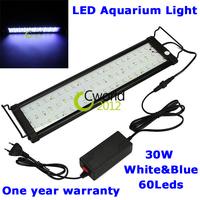 2014 New High Quality 30W 60 Led Fish Tank Pond Light  Blue White Submersible Aquarium Led Lamp Lighting F-5060 Aquarium Light