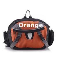Supply  genuine Outdoor sharp front pockets skating waist bag hand bag sking waist packs fashion Design 0964 Special