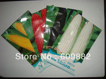 4 KINDS 40 CORN SEEDS   Black Red Yellow White waxy corn seeds Organic Food