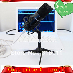 Free shipping 2013 Mic Brand professional high quality voice Alctron UM USB tube condenser instrument recording microphone(China (Mainland))