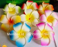 free shipping + good quality 50pcs Large  6CM MIXED COLORS  Fabulous Hawaiian foam frangipani flowers wedding party decor