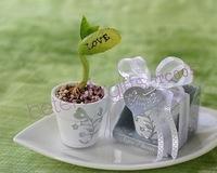 Free Shipping 100pcs Love Message Bean Wedding Present TC005
