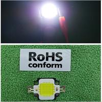 2014 Real Top Fashion Freeshipping Rohs 5piece 10watt High Power Bright Led 600lm Bulb Pure 6000-6200k Lamp Light 12v Em002