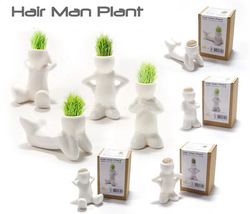 4pcs /lot FREE SHIPPING Gift Hair Man grass Plant Home Decoration DIY White Man Magic grass planting,Creative Gift Plant(China (Mainland))