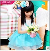 Princess Children'S Clothing 2014 sUmmer Female Child one-piece Dress Child Fluffy Tulle Dress PrincesS Dress