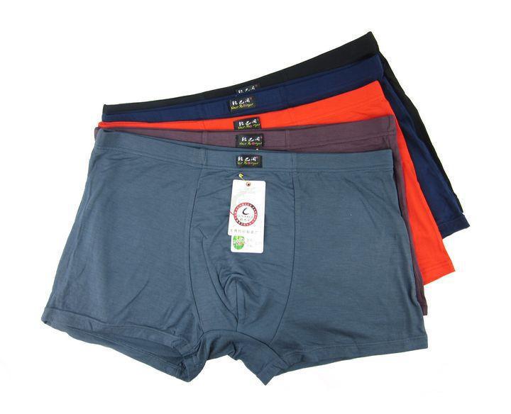 5PCS/lot Top Quality Boxers Bamboo Underwear Male Underwear Box Plus Big Size XL-- 6XL Free Shipping(China (Mainland))
