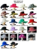 Dress Organza Hat  Bridal Wedding Hat Formal Hat for Church,races,brim width in 11cm-15.5cm,free shipping by EMS