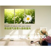 Free shipping  3 Panels Hot Living Room Painting Canvas Contemporary Decorative Paint Huge Print Daisy  Art Sea Of Flowers pt32