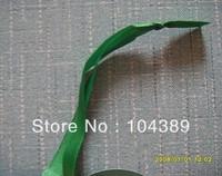 Green ribbon and paper hang tag