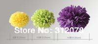 "DIY 12""(30cm) Decorative Tissue Craft Paper Pom Poms Flower Balls for Wedding Favors"