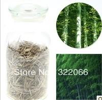 100PCS + MOSO BAMBOO HUGE MAO BAMBOO- Seeds - Phyllostachys pubescens / edulis - Moso Hardy Bamboo